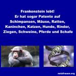Frankenstein lebt - er hat viele Patente, sogar auf Schimpansen, vermarktet Versuchstiere für die Pharmaforschung, denen künstliche DNA eingebaut wurde und durch CETA gibt es seinen genmanipulierten Lachs und Äpfel im Einkaufwagen