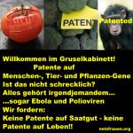 Patente auf Tier- und Pflanzen-Gene und auch der Mensch bleibt vom Patentierungswahn nicht verschont