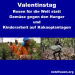 Valentinstag – Kinderarbeit auf Kakaoplantagen – Rosen für die Welt statt Gemüse gegen den Hunger