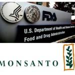 Warum gentechnisch veränderte Organismen (GVO) auf der Welt zugelassen sind und wie Monsanto die FDA unterwanderte