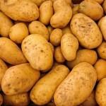Faktencheck Kartoffeln – zu viel chemische und natürliche Giftstoffe und demnächst genmanipuliert auch in Europa