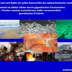 Notstand im Süden Chiles durch gigantisches Fischsterben – Fischer machen Lachsfarmen dafür verantwortlich – gewaltsame Proteste