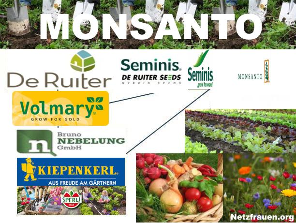 Monsanto 6