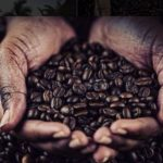 Kaffee, das braune Gold – Landgrabbing for Coffee