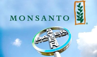 MonsantoBayer