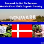 TOLL! Dänemark Will Erstes 100%-Bio-Land Der Welt Werden – Amazing Denmark Is Set To Become World's First 100% Organic Country