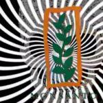 Gewinneinbruch bei Monsanto – Europäische Kommission prüft die geplante Firmenübernahme Monsanto durch den Bayer-Konzern