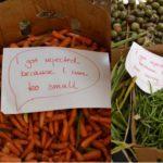 Warum Afrika sich um die Lebensmittelverschwendung kümmern muss – Ghana macht es vor!  Why Africa Needs To Deal With Food Waste  – Noble idea cutting food waste, feeding the hungry in Ghana