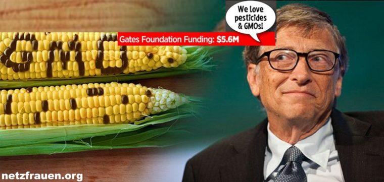 Bill Gates5