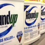 "Monsanto Fassungslos – Kalifornien Bestätigt 'Roundup' Wird ""Krebserregend"" Gekennzeichnet - Monsanto Stunned – California Confirms 'Roundup' Will Be Labeled ""Cancer Causing"""