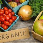 Studie: Bio für die ganze Welternährung möglich - Die Welt nachhaltig ernähren!
