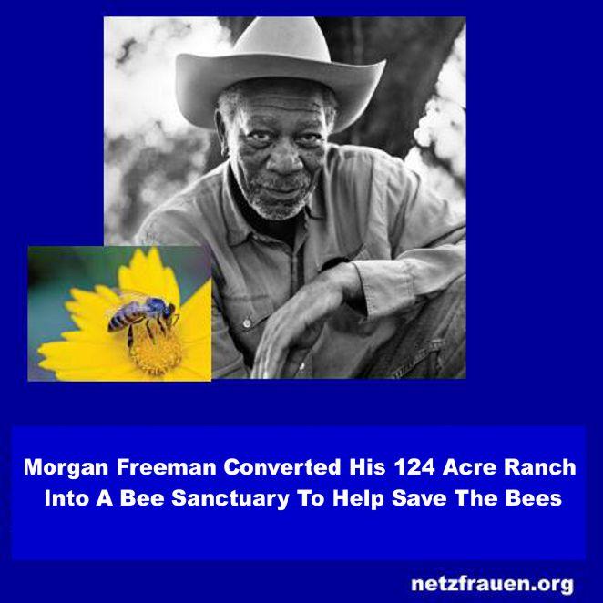 Morgan7