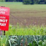 Wir brauchen keine GVO, um die Welt zu ernähren – Hier folgen acht Gründe, warum!  Monsanto really wants you to believe we need GMOs to feed the world. We don't. Here's 8 reasons why.