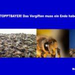 #STOPPTBAYER! Laut Bayer-Studie: Neonikotinoid gefährdet Bienen nicht - wer hätte es auch anders erwartet!