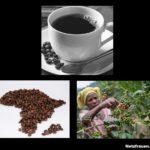 Kaffee und sein Preis