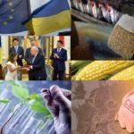 Ukraine: Wirtschaftliche Interessen bestimmen Weltpolitik - Ukraine und Kanada unterzeichnen Freihandelsabkommen - EU genehmigt elf GV-Mais-Sorten v. Syngenta u. drei GV-Maissorten v. Bayer-Monsanto