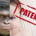 Gentechnik 2.0 – Das gentechnisch veränderte Designerbaby – Großbritannien: nach Mensch-Tier-Embryonen jetzt auch Drei-Eltern-Babys