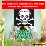 Nach dem Sie die neue Studie gelesen haben, wollen Sie auch kein GMO mehr! - New Study Shows Major Molecular Differences between GMO and Non-GMO Corn