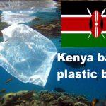 Afrika macht es vor! Kenia wird neueste afrikanische Nation, die Plastiktüte verbietet – Kenya Becomes the Latest African Country to Ban Plastic Bags