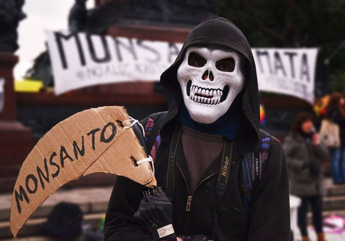https://netzfrauen.org/wp-content/uploads/2017/06/Monsanto44.jpg