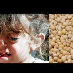 Soja-Anbau für Europa  -  wir essen uns zu Tode!