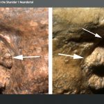 Die Versorgung von Shandar: Neandertaler haben einander umsorgt - ShanidarCare: Neanderthals cared for their own