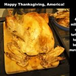 Die grausame Realität hinter Thanksgiving-Truthahn – The Truth about Thanksgiving Turkey – 46 millions of turkeys have been murdered!