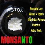 Hurra! Zurück zum einheimischen Saatgut - Monsanto verliert Millionen in Indien - Monsanto Lose Millions of Dollars After Indian Farmers Switch to Native Seeds