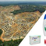 Wo Palmöl drin ist, muss Palmöl draufstehen – auch bei Kosmetik!