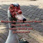 Deutschland:  Fleisch-Monopoly auf Kosten der Steuerzahler!