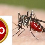 Afrika will nicht mehr Versuchskaninchen für die Genlobby sein! - The scary truth behind GMO in Africa! GM mosquitoes and GM Potato Push in Africa!