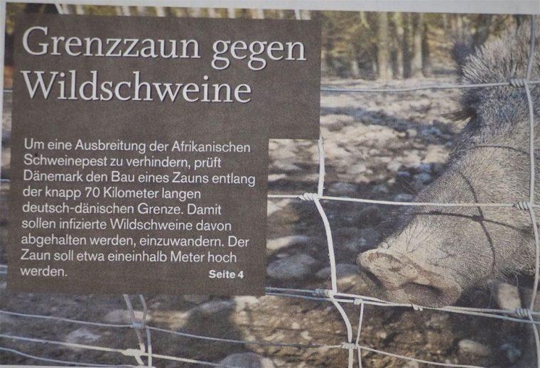 Danemark Zaunt Sich Ein 70 Kilometer Langer Zaun Entlang Der