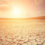 Denkanstoß: Wie Neuseelands Lebensmittelversorgung angesichts der Klimaveränderung gesichert werden kann - Food for thought: How to secure New Zealand's food supply in the face of a changing climate