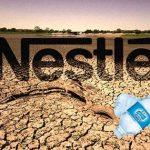 Hurra! Nestlé-Boykott weitet sich aus! Zweitgrößter Restaurantführer lehnt Werbung für Nestlé-Marken ab!