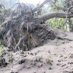 Wenn die Erde bebt - Der Kampf gegen die Naturgewalten und die ganze Welt ist betroffen!