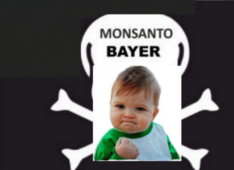 Bayer-Aktie bricht ein! Monsanto-Krebs-Urteil bestätigt durch Richterin!
