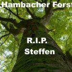 Lasst den Hambacher Forst stehen, als Mahnmal, denn dann war der Tod von Steffen nicht umsonst!