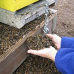 #STOPPTBAYER! Laut Bundesregierung sollen Bienen nicht zur Gefahr für Chemiegiganten werden! - Jonathan Lundgren, WHO Could Destroy Bayer-Monsanto And Change The World…