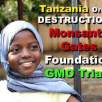 Tansania entlarvt BayerMonsanto und schockt Bill Gates und die ganze Genlobby! - Tanzania orders destruction of Monsanto/Gates' GM trials due to illegal use for pro-GM propaganda