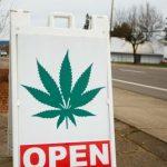 Neue Studien zeigen: Cannabis hilft bei vielen Krankheiten! – Verhindern große Branchen wie Pharma die Legalisierung von Hanf?