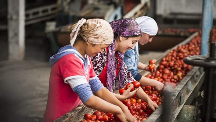 Super! Chinas Bevölkerung hat Angst vor GMO und das kirgisische Parlament fordert 100%igen Bio-Anbau! - Kyrgyzstan Parliament Orders 100% Organic Agriculture