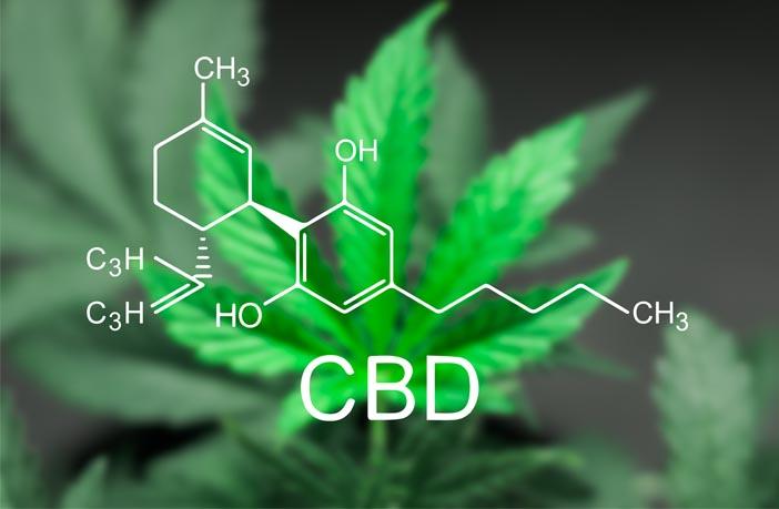 neue studien zeigen cannabis hilft bei vielen krankheiten. Black Bedroom Furniture Sets. Home Design Ideas