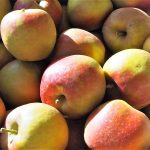 Verrückt! Trotz Überschuss viele ausländische Äpfel im Regal!