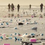 Weltnaturerbe Wattenmeer in Gefahr - 270 Container beim Sturm über Bord incl. gefährliche Stoffe!