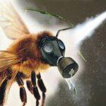 Super - Sieg für die Bienen - EU verbietet Bayer-Pestizid!- EU to ban Bayer's pesticide linked to harming bees