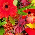"""Muttertag - GESCHENKTE AUFMERKSAMKEIT MIT PESTIZIDEN - Blumen sind ein """"vergiftetes Geschenk""""!"""
