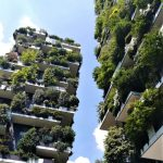 Bald wird es in Mailand mehr Bäume als Menschen geben! Milan has embarked on an ambitious plan to plant 3 million trees