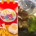 Kinder fordern McDonald's auf, Plastikspielzeug zu verbannen - Kids ask McDonalds to ditch plastic Happy Meal toys