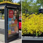 Tolle Idee - Die Niederlande haben aus Bushaltestellen ein Zuhause für Bienen gemacht! THIS DUTCH CITY HAS TRANSFORMED ITS BUS STOPS INTO BEE STOPS