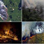 #PrayforAmazonia - Amazonas, die Lunge unseres Planeten brennt!
